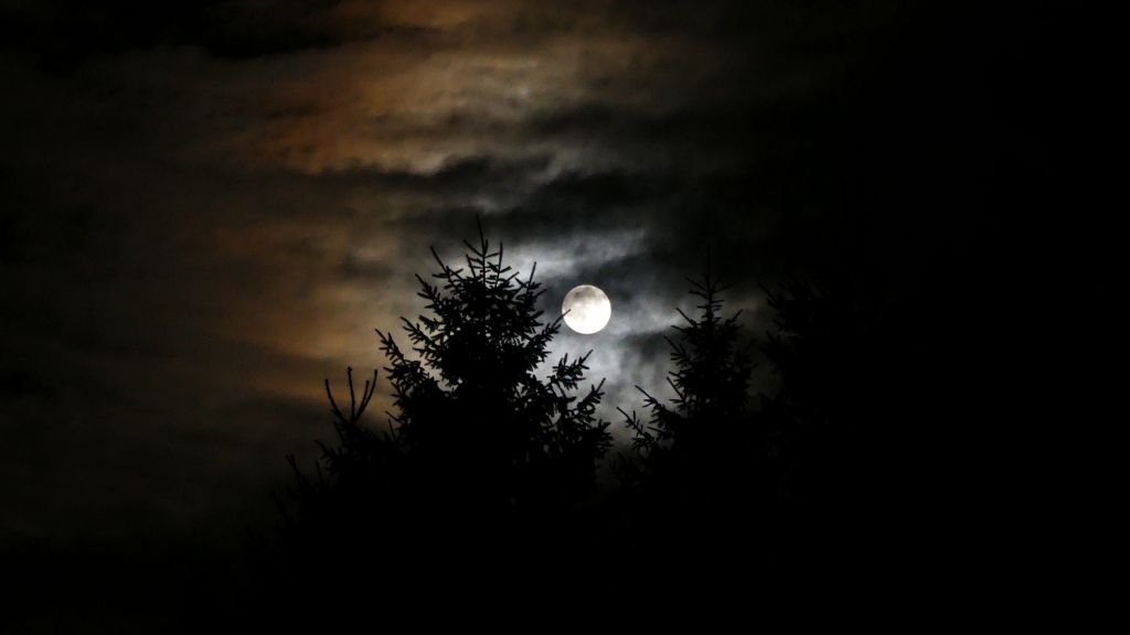 notturna taburno
